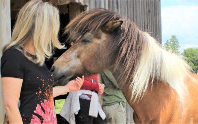 Wenn das Ego aufgibt, kommt das Pferd